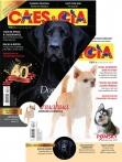 Edição 479 - Junho/2019 - Chihuahua/Dogue Alemão