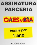 Assinatura 12 meses parceria Site Canil Hangnel Chonso