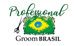 Categoria Professional